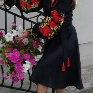 plate-rozy-v-cvetu2